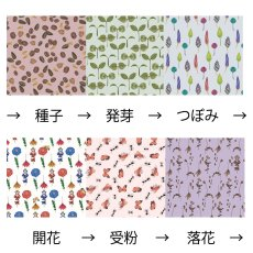 画像10: 春夏秋冬/キャスケット(夕) (10)
