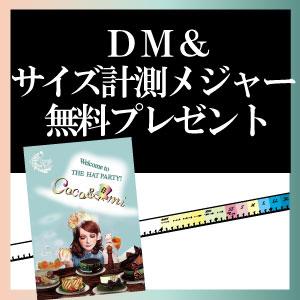 DM・計測メジャープレゼント
